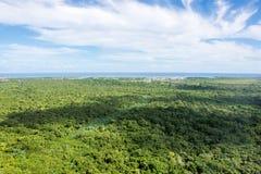 Vue de la belle jungle partant loin à l'océan Images stock