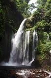 Vue de la cascade dans la jungle Photo libre de droits