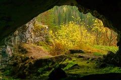 Vue de la caverne photos libres de droits