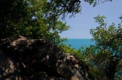 Vue de la forêt sur une belle montagne Photos libres de droits