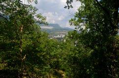 Vue de la forêt sur une belle montagne Photo libre de droits