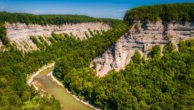 Vue de la gorge profonde de rivière de Genesee en parc d'état de Letchworth, NY Image libre de droits