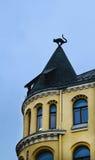 Vue de la maison avec une tour et un chat Photos stock