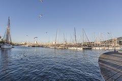 Vue de la mer dans le port de Barcelone avec des bateaux et des palmiers image stock
