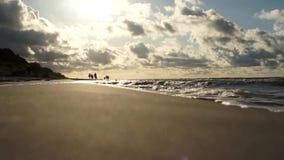 Vue de la mer, vagues banque de vidéos