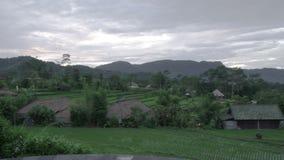 Vue de la piscine sur les terrasses de riz de la montagne et la maison des agriculteurs Bali, Indon?sie banque de vidéos