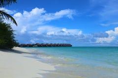 Vue de la plage avec de l'eau les palmiers et azuré Jour tropical ensoleillé Ciel bleu Plage avec le sable blanc Image stock