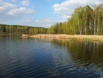 Vue de la rivière Photographie stock