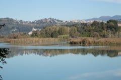 Vue de la rivière le Tibre Photographie stock libre de droits
