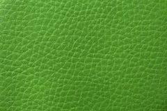 Vue de la texture de peau en vert photos libres de droits