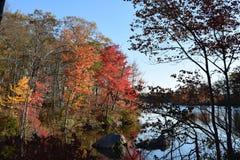Vue de lac Image stock