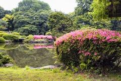 Vue de lac artificiel et d'azalée Photos libres de droits