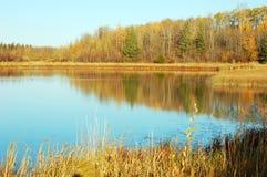 Vue de lac autumn en île d'élans Images stock