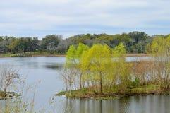 Vue de lac elm Image libre de droits