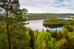 Vue de lac en Finlande Photos stock
