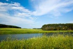 Vue de lac et de forêt summer. photographie stock libre de droits