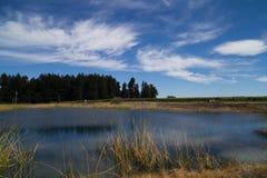 Vue de lac sous le jour de soleil Photo stock