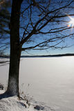 Vue de lac winter Image libre de droits