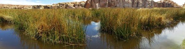 Vue de Laguna Negra et le paysage rocheux du plateau bolivien image libre de droits
