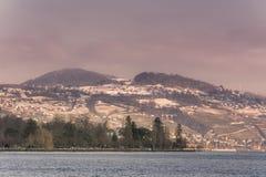 Vue de Lausanne Suisse du lac Images libres de droits