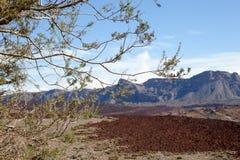 Vue de lave de parc national de Teide Image libre de droits