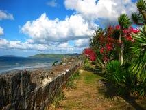 Vue de littoral avec les fleurs, la mer et le nuage Photos stock