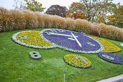 Vue de matin d'horloge de fleur dans la ville de Genève, Suisse Photo stock