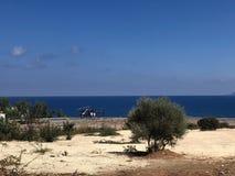 Vue de mer avec des buissons et un hélicoptère images libres de droits