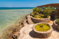 Vue de mer avec la mer et les palmiers sur la plage Egypte Images libres de droits