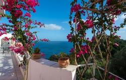 Vue de mer de la véranda envahie avec la bouganvillée Photos stock