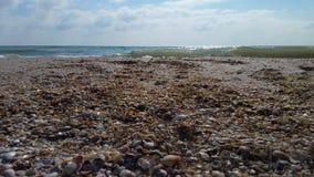 Vue de mer du rivage des coquilles, clips vidéos