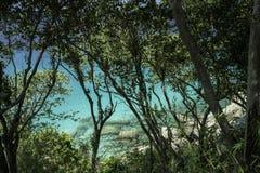 Vue de mer par la forêt tropicale autour de grandes pierres et d'eau claire azurée Belle lagune de paradis photos stock