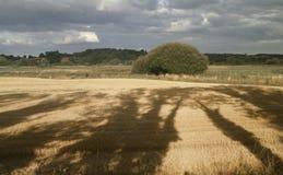 Vue de Minworth, Birmingham, Angleterre Images libres de droits