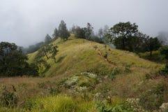 Vue de montagne brumeuse Images libres de droits