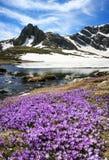 Vue de montagne de Rila, Bulgarie Images libres de droits