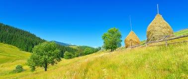 Vue de montagne en été élevé avec des meules de foin photo libre de droits