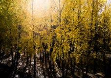 Vue de montagne, Thibet, Chine image stock