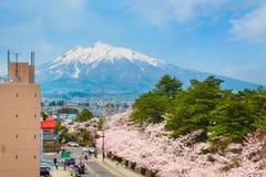 Vue de Mt Iwaki de hall municipal de Hirosaki est l'une des meilleures fleurs de cerisier de visionnement de tache avec le bâti I photographie stock libre de droits