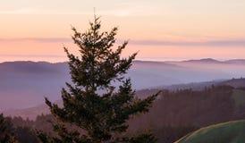 Vue de Mt Tamalpais au coucher du soleil photo libre de droits
