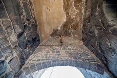 Vue de mur historique dans la région de Sur, Diyarbakir, Turquie photographie stock libre de droits