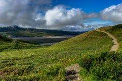 Vue de nature avec des fleurs et un chemin et nuages dans Denali Nationa Image stock