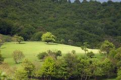 Vue de nature dans Stara Planina, Bulgarie. Photos stock