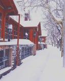 Vue de neige photographie stock libre de droits
