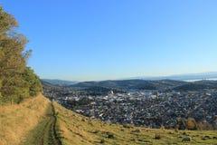 Vue de Nelson New Zealand images libres de droits