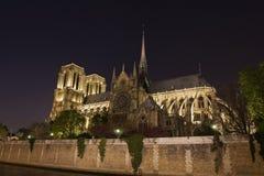 Vue de nuit de Notre Dame de Paris Photos stock