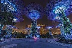 Vue de nuit du verger de Supertree dans le jardin par la baie avec photo stock