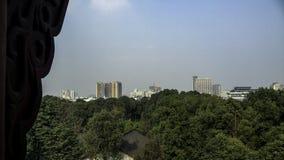 Vue de pagoda Image libre de droits