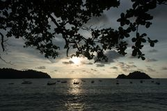 Vue de panorama de coucher du soleil et silhouette des arbres et des bateaux sur la plage Photographie stock