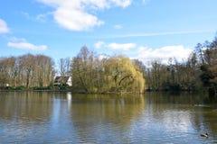 Vue de panorama de temps de lac au printemps Photographie stock libre de droits