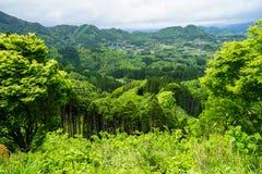 Vue de panorama et de ville de montagne de verdure de loin avec le ressort t Photo libre de droits